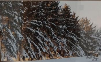 Winter-Trees-27-x-18